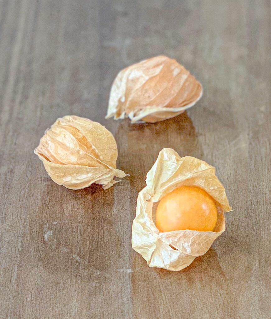 食用ホオズキ|オレンジチェリー