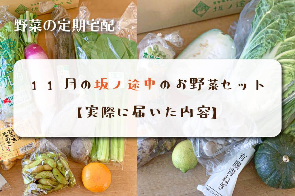 11月の坂ノ途中のお野菜セット